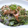 salmon spinach salad